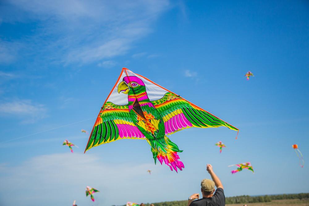 картинка фестиваль воздушных змеев первый российский