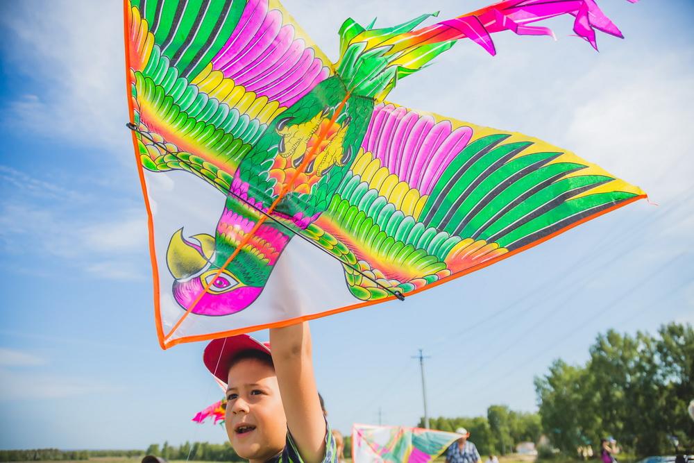 картинка фестиваль воздушных змеев давно хотелось сюда